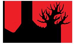 Simons Cares Logo