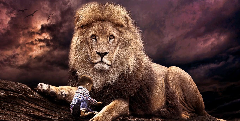 Lion guarding child